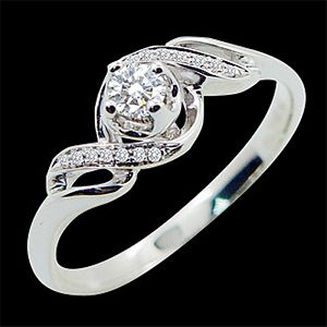 新的愛戀-求婚鑽戒